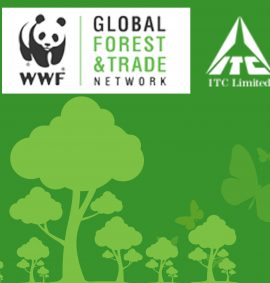 Global Forest & Trade Network